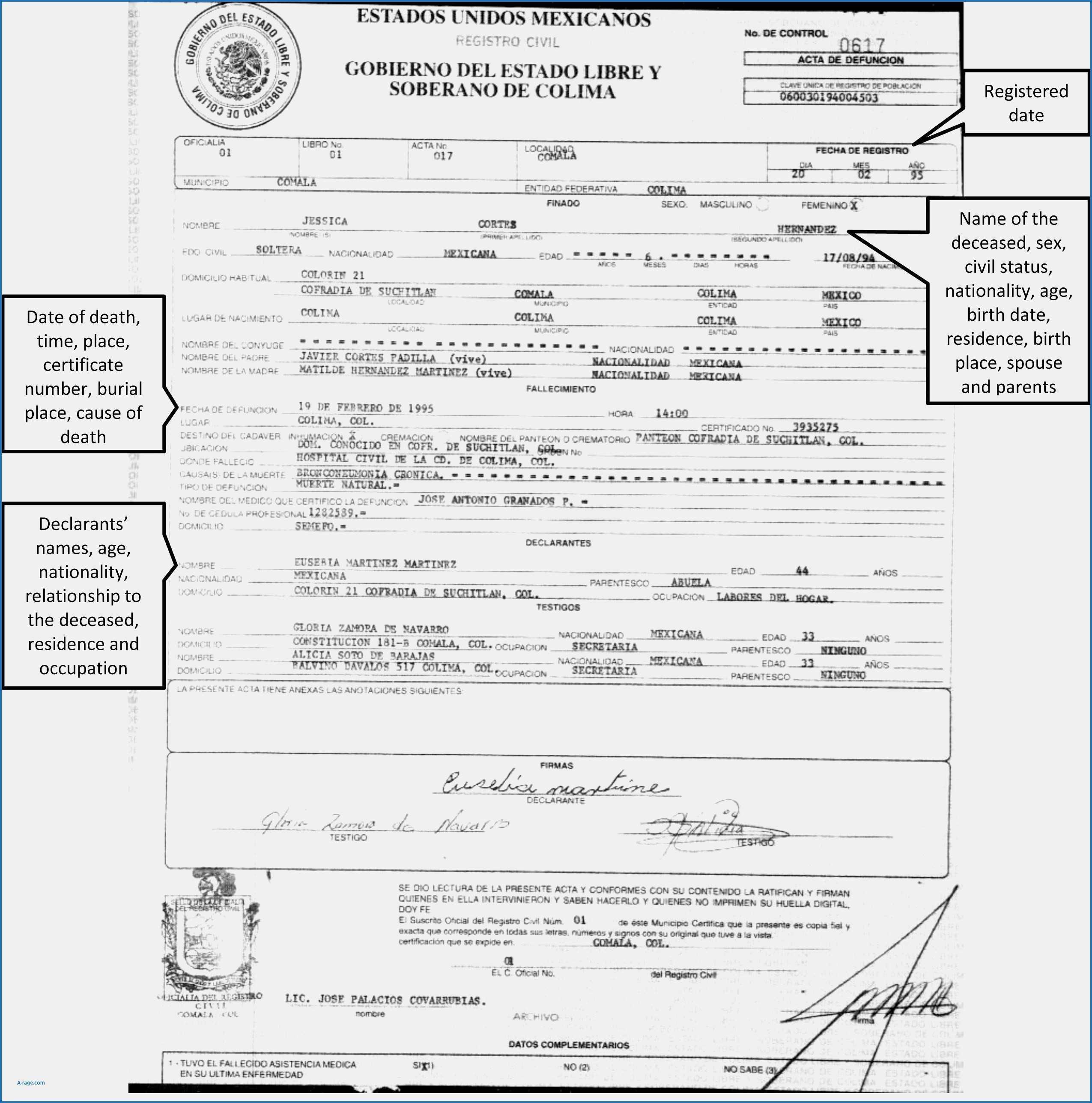 Brilliant Ideas For Birth Certificate Template Uk Of Your Pertaining To Birth Certificate Template Uk
