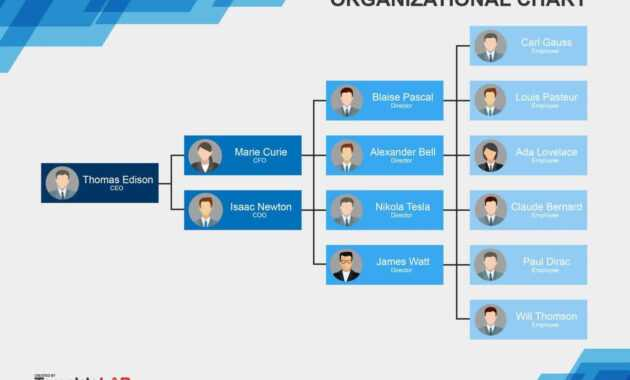 Download Org Chart Template Word 11 | Organizational Chart with regard to Org Chart Word Template