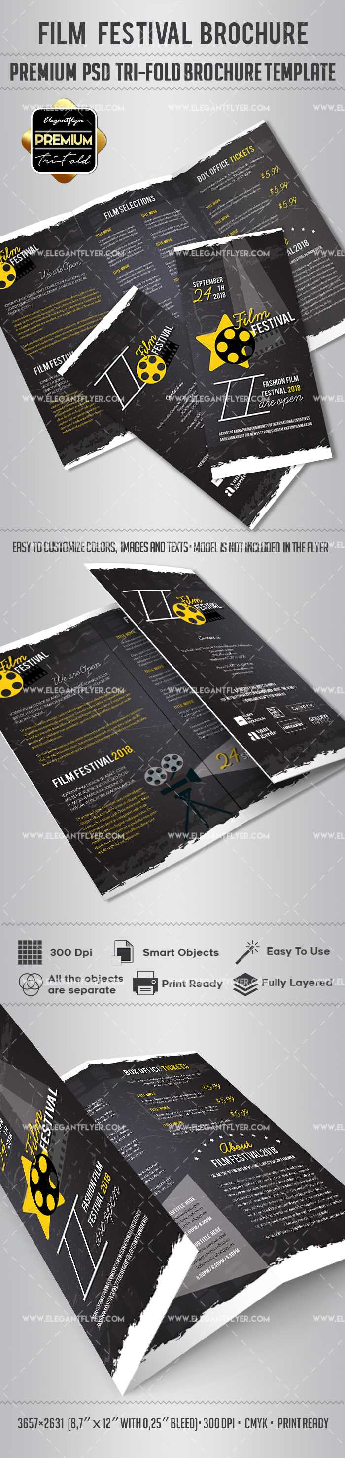 Film Festival Brochure Design For Film Festival Brochure Template