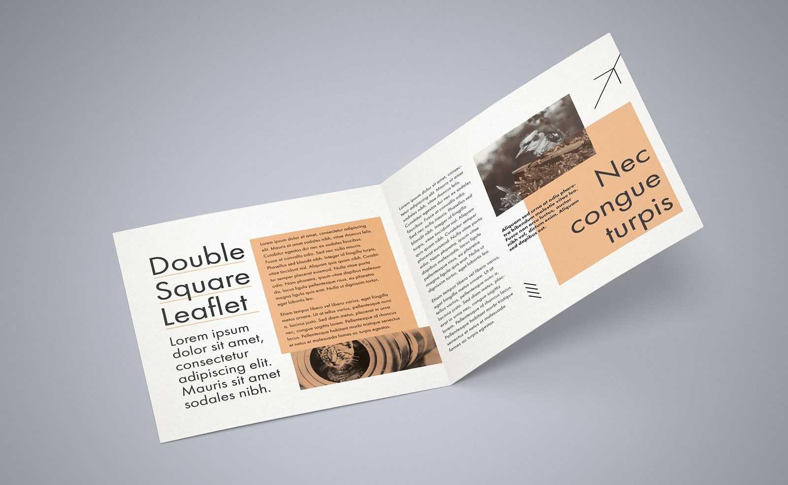 Free Square Bi Fold Brochure Mockup Psd File 2 | Bi Fold Regarding 2 Fold Brochure Template Free