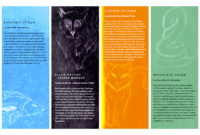Indesign Projects | Timothy Rose throughout Zoo Brochure Template