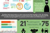 Nonprofit Annual Report As An Infographic (Summer Aronson for Nonprofit Annual Report Template