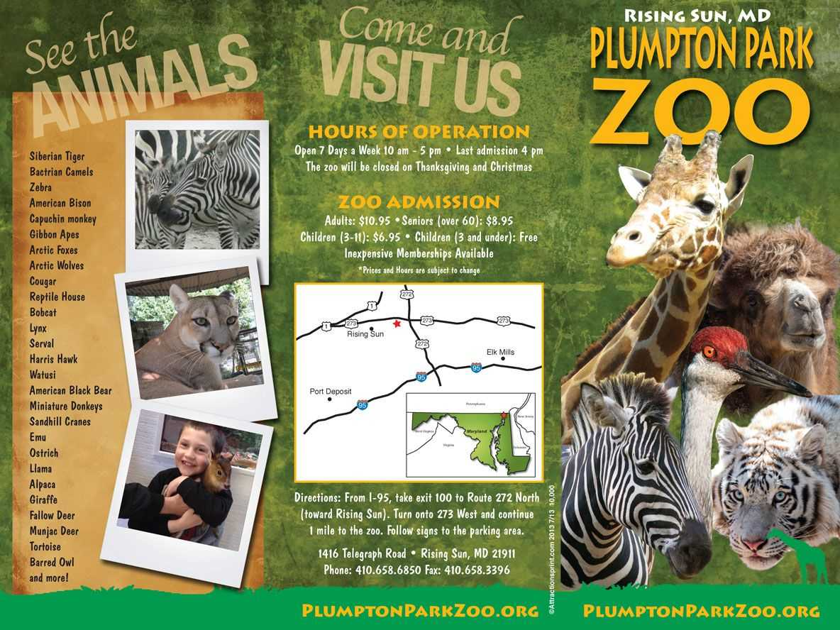 Pin On The Las Vegas Zoo With Regard To Zoo Brochure Template
